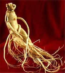 Can ginseng cure erectile dysfunction and improve sexual potency?
